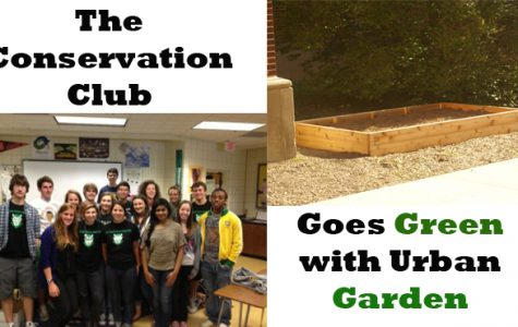 Urban garden benefits all