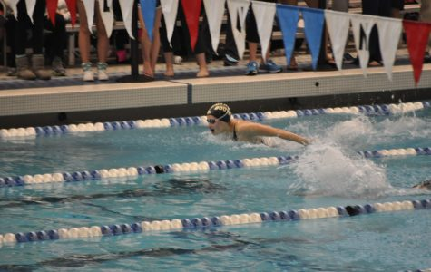 Girls swimming and diving places third in Division II State Championship