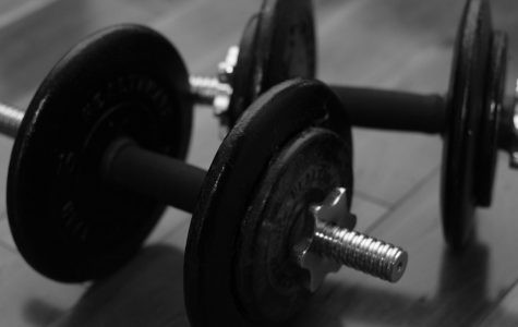 Students discover new activity in weight lifting