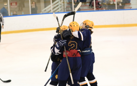 Women's hockey team dominates rival