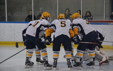 Boys hockey dominates Utica Stevenson, 13-0