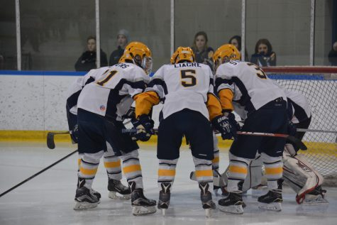 Boys hockey dominates Utica Stevenson, 13-0