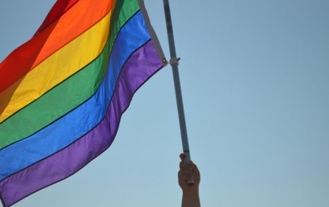 History in the Making: Grosse Pointe holds its first Pride march
