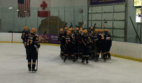 Boys hockey dominates Anchor Bay in Regional Final, 4-0