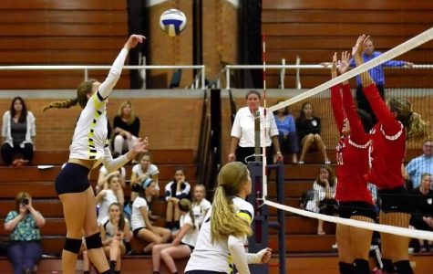 Volleyball loses to big competition at home