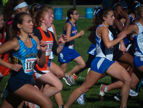 Q&A with Team Michigan cross country runner