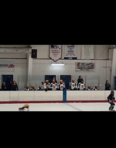 Some hockey players on the bench. Photo by Olivia Mlynarek '19