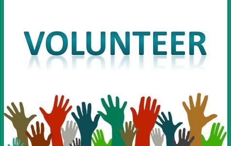 Volunteer opportunities in Grosse Pointe