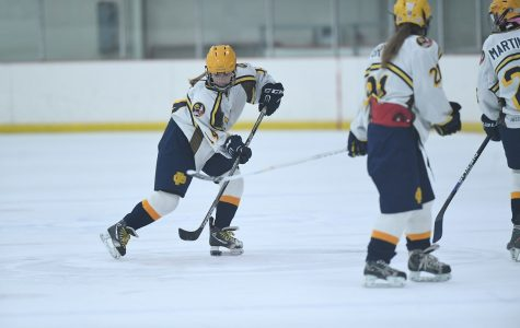 South hockey players gear up for a great season