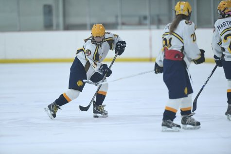 Girls Hockey has a strong season with more to come