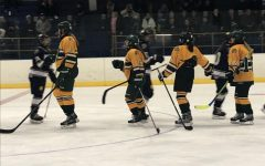 Girl's hockey defeats North in dominating fashion