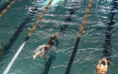 Girls' Swim and Dive team claims school record finish at State Tournament