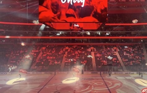 The Red Wings hype the crowd up before a game earlier this season before the NHL suspended their season. Photo by Julia Gebeck '22.