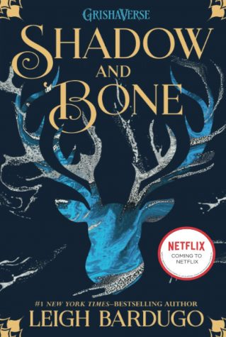 Shadow & Bone: Predictions and Pitfalls